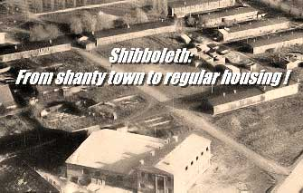 From Shanty Town