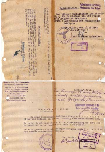 German Travel Doc 1944